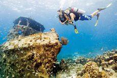 Curso Scuba Diver